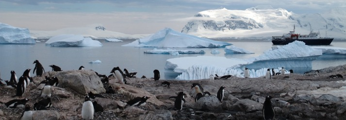 Antarctica-Bucket-List-3