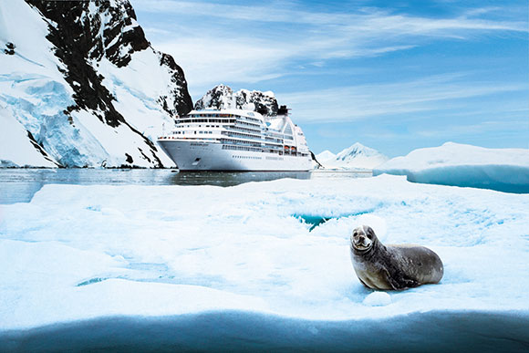 seabourn-expedition-wildlife